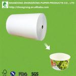 Quality PE coatd paper for disposable paper salad bowl wholesale