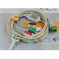 Quality 5 Leads Snap AHA ECG Patient Cable , Mindray 12 Pin One Piece ECG Cable wholesale
