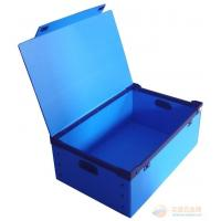 Recyclable Reusable Moving Storage Corrugated Plastic Boxes correx box White / blue