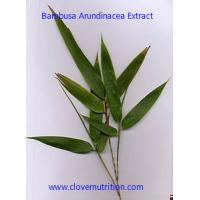 Bambusa Arundinacea Extract Yellow Brown Fine Powder with ISO factory