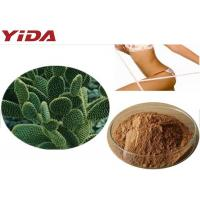 Quality Hoodia Gordonii Cactus Extract Weight Loss Steroids wholesale