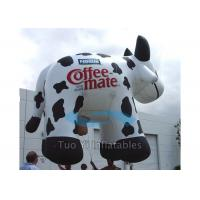 Best Huge Inflatable Cow Helium Advertising Balloons With 38M Foot Long Tether Line wholesale