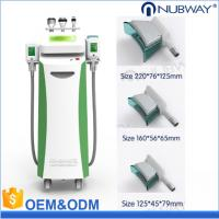 Multifunctional Beauty Equipment Kryolipolyse Cool Tech Slimming Machine Cryolipolysis Fat Freezing Equipment
