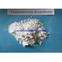 Bodybuilding Testosterone Enanthate Injection 250 , 315 37 7 Safe Testosterone Booster