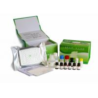 Quality H9N1 Bird Flu Veterinary Diagnostic Kits Antigen Coated Microplate For Personal wholesale
