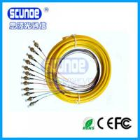 3.0mm SC Optical Fiber Patch Cord For Local Area Networks With 12 Cores Distribution Pigtail