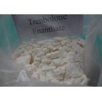 Quality Trenbolone Enanthate 10161-33-8 Trenbolone Powder Muscle Building Drugs wholesale