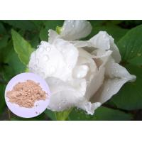 Quality Peony Root Plant Extract Powder Paeonia Lactiflora For Skin Whitening wholesale