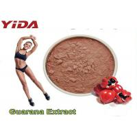 Quality Guarana Extract Natural Weight Loss Steroids 10% 20% Purity Reduced Appetite wholesale