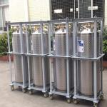 Quality 175L Cryogenic Liquid xygen/Nitrogen/Argon Cryogenic Cylinder Dewar Bottle TL175L wholesale