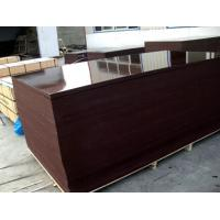Film faced plywood , building concrete plywood , construction plywood