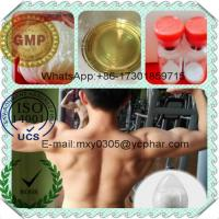 Best 99% Steroid Powder  Testosterone Decanoate 5721-91-5  For Musle Building wholesale