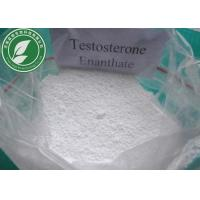 Quality Raw Steroid Powder Testosterone Enanthate CAS 315-37-7 With Safe Delivery wholesale