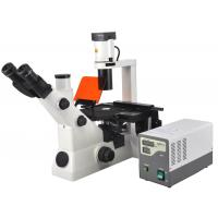 Quality Inverted Fluorescent Biological Microscope With Infinitive Optical System wholesale
