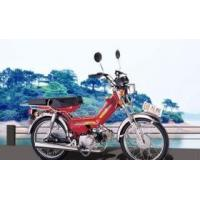 Best Gas scooter (Wanliang) wholesale