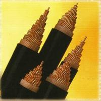 Quality 0.6/1kv Xlpe Insulated Power Cable xlpe insulated power cable wholesale