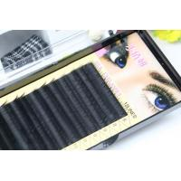Quality Premium Long Lasting Eyelash Individual Extensions For Beauty Salon 10mm In Three Rows wholesale