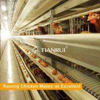 Best Low price high quality China supply 3 tiers layer poultry rearing cages wholesale