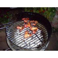 Best portable gas bbq grill wholesale