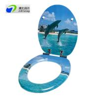 Original factory sale of Custom designed novelty printed toilet seat with soft close hinges-European & US Standard