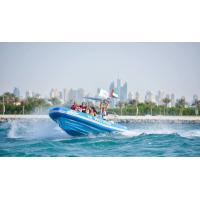 Best 7 Chamber Portable Sailing Boat Rib960C 32 Feet For Water Sports Fun wholesale