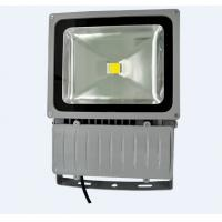 70W Waterproof Led Normal Flood Light