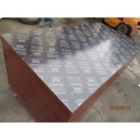 KINGPLEX BRAND FILM FACED PLYWOOD, COMBI CORE, WBP PHENOLIC GLUE, IMPORTED BROWN FILM