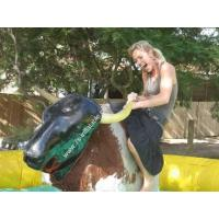 Best Inflatable Bull Rodeo wholesale