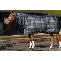 Best Economical Turnout Horse Rugs wholesale