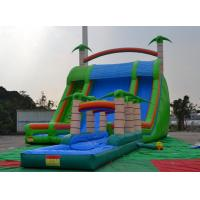 Quality Colorful 0.55mmpvc Tarpaulin 8*6*5m Inflatable Slide With Swimming Pool For Outdoor Sports wholesale