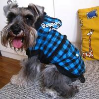 winter coats for dogs,dog warm coats,down coats for dogs