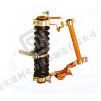 Quality RW4-12 Fuse cut out wholesale