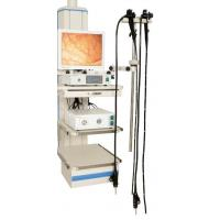 Quality Standard video gastroscope wholesale