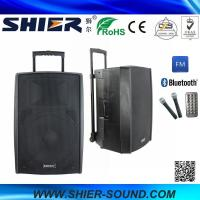 Quality 15 Inch 65W Class AB AK15-308 Best Trolley Rechargeable USB Speakers For Dancing wholesale