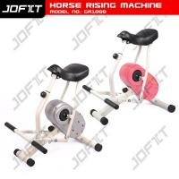 Quality Horse Riding Machine GB1000 wholesale