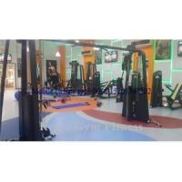 Quality New Design Adjustable Crossover Lifetime Fitness Machines(RPN-016) wholesale
