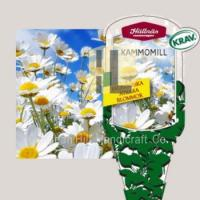 Quality Plant Labels plant hang tag plastic flower label for gardening wholesale