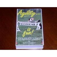 Quality Agility is Fun - Problems 2 wholesale