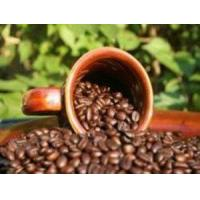 Quality Good Dog Coffee PRHALSG1LBWBVR Puerto Rico Shade-Grown Coffee 1 lb Medium Roast Whole Bean wholesale
