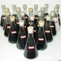 Best Impregnated activated carbon wholesale