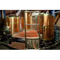 Hotel/Pub Brewery Equipment Product name: 500L Red Copper Brewhouse