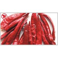 Dried Chilli Whole Wangdu Chilli