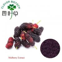 Quality Herbal Extract Mulberry Fruit Extract wholesale