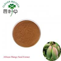 Quality Herbal Extract African Mango Seed Extract wholesale