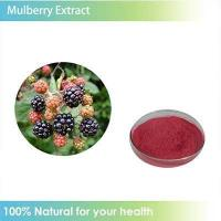 Quality folium mori 10:1 1%-98% organic mulberry extract wholesale