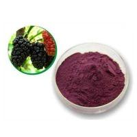 Quality mulberry fruit juice concentrate P.E. powder mulberry juice wholesale
