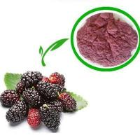 Quality pure natural 10:1 powdered bulk mulberry fruit extract wholesale